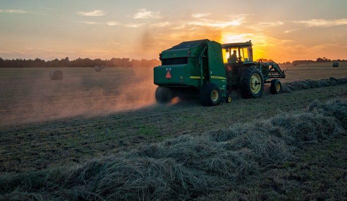 Государственные агрокомпании не эффективны